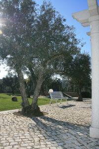 Vista Quinta Da Nora 7